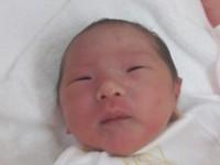 2016年6月24日生まれ 和ちゃん