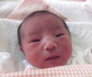 2016年8月21日生まれ 稀子ちゃん