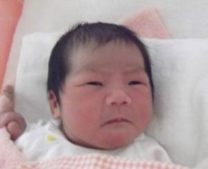 2016年9月4日生まれ 依千ちゃん