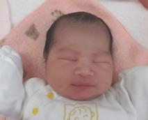 2016年3月23日生まれ 陽梨ちゃん