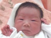 2016年2月22日生まれ 愛花ちゃん
