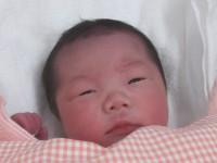 2016年12月14日生まれ 初ちゃん