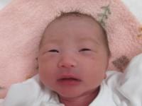 2017年1月24日生まれ 菖ちゃん