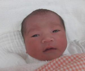 2016年12月23日生まれ 萌心ちゃん