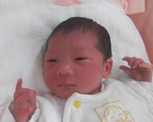 2017年4月9日生まれ伊万里ちゃん