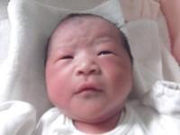 2017年6月29日生まれ 都麦ちゃん