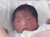 2017年7月30日生まれ 日咲ちゃん