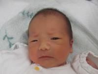 2017年8月26日生まれ 虎太郎くん