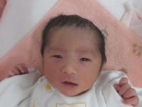 2017年12月17日生まれ 聖來ちゃん