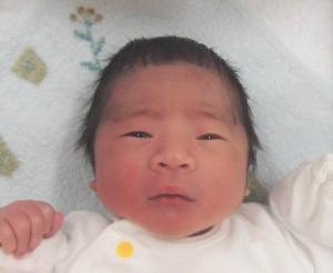 2018年1月8日生まれ 莉久くん